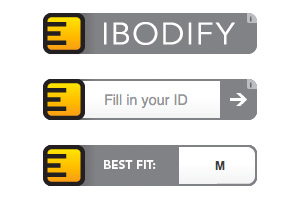 Views of the IBODIFY widget